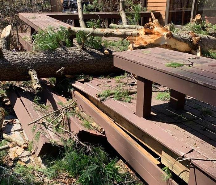 Tree Damage To Roof and Deck