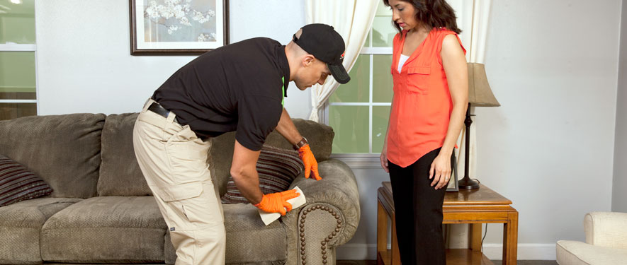Chelmsford, MA carpet upholstery cleaning
