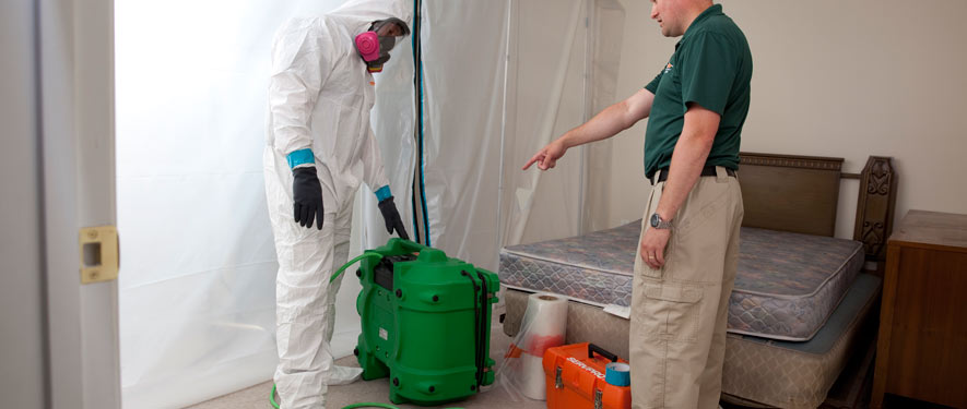 Chelmsford, MA mold removal process